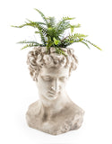 White Stone Effect Classical David Bust Planter 45 x 36 x  35 cm