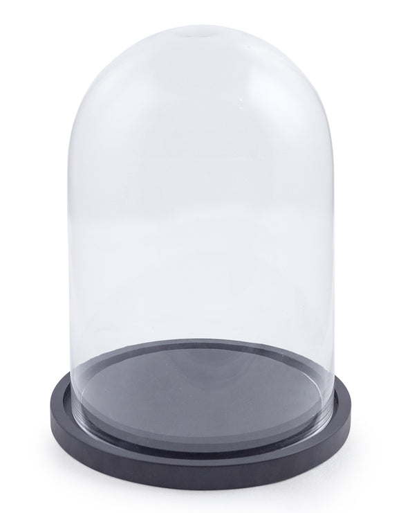 Round Glass Display Bell Jar Dome Cloche Black Wooden Base 41 x 27 x 27 cm