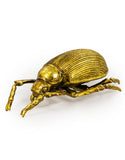 Large Gold Beetle Wall Hanging Sculpture 22 cm High x 11 cm Wide x 7.5 cm Deep