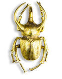 X L Gold Beetle Wall Hanging Sculpture 36 cm High x 20.5 cm Wide x 12 cm Deep