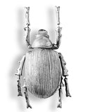 Large Silver Beetle Wall Hanging Sculpture 22 cm High x 11 cm Wide x 7.5 cm Deep