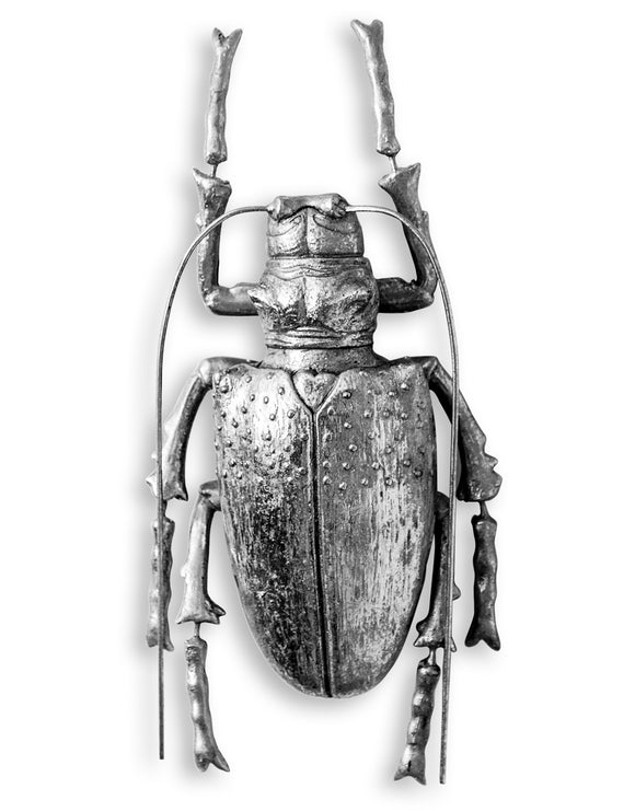 Large Silver Beetle Wall Hanging Sculpture 37.5 cm High x 13.5 cm Wide x 6 cm Deep
