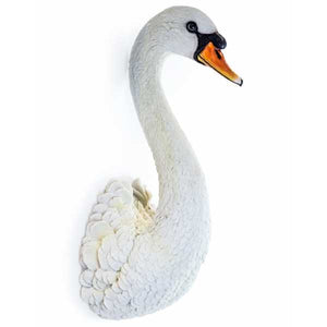 Fabulous Swan Head Wall Hanging - 57.5 cm High X 23.5 cm Wide x 23 cm Deep