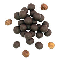 RawMio Chocolate Covered Sprouted Hazelnuts 2oz