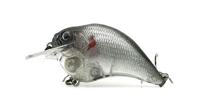 Transparent Shad