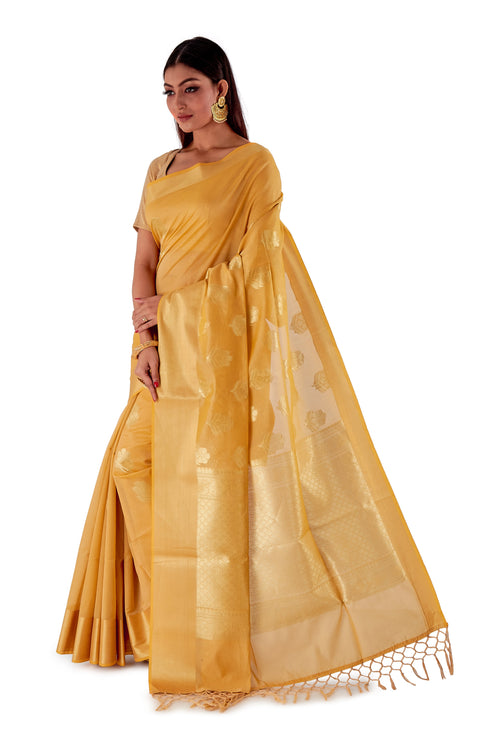 Golden-base-with-Golden-zari-all-body-zari-work-saree-SNCS1117-3