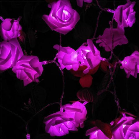 Novelty Rose Led String Lights-lighting-HappyBirthdayGirl