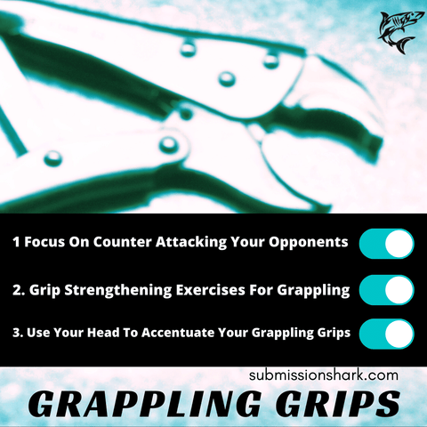 Grips for Grappling Sports