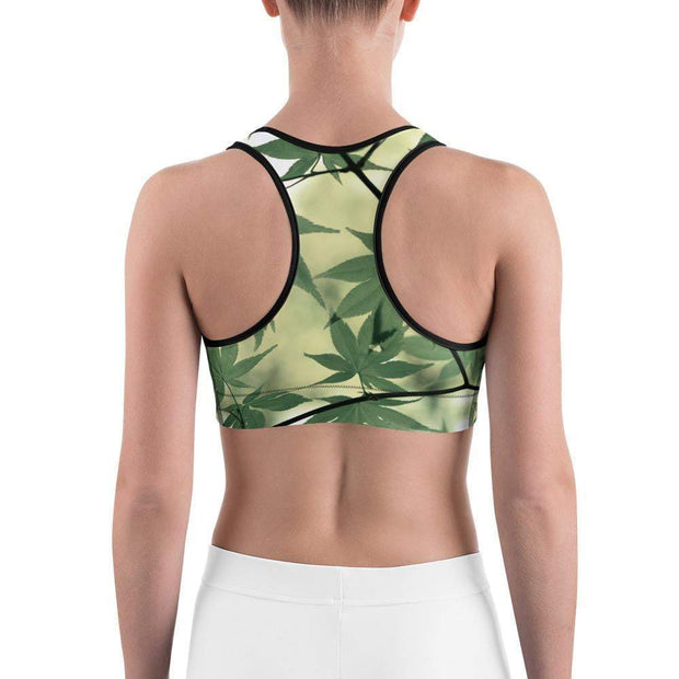Legalize Leaf Sports bra | Submission Shark Back