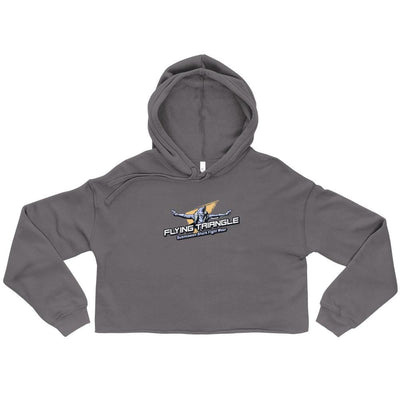 Flying Triangle Silver Crop BJJ Hoodie