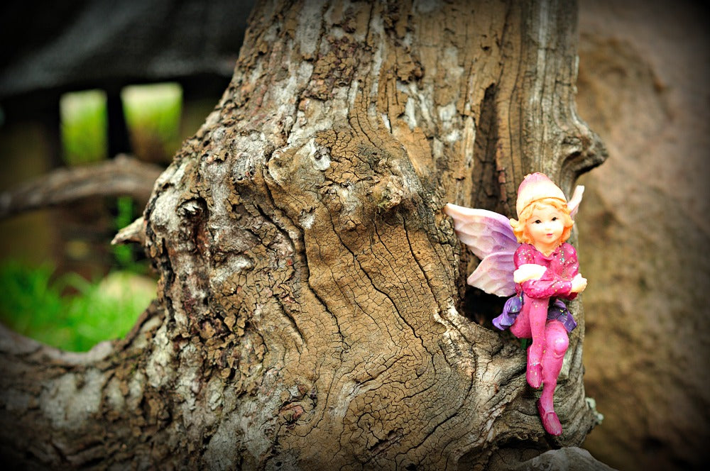 A Fairytale Career in Fairy Gardening