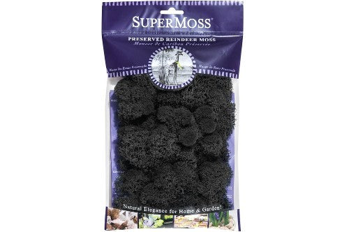 Reindeer Moss 2oz - Black - MyFairyGardens.com