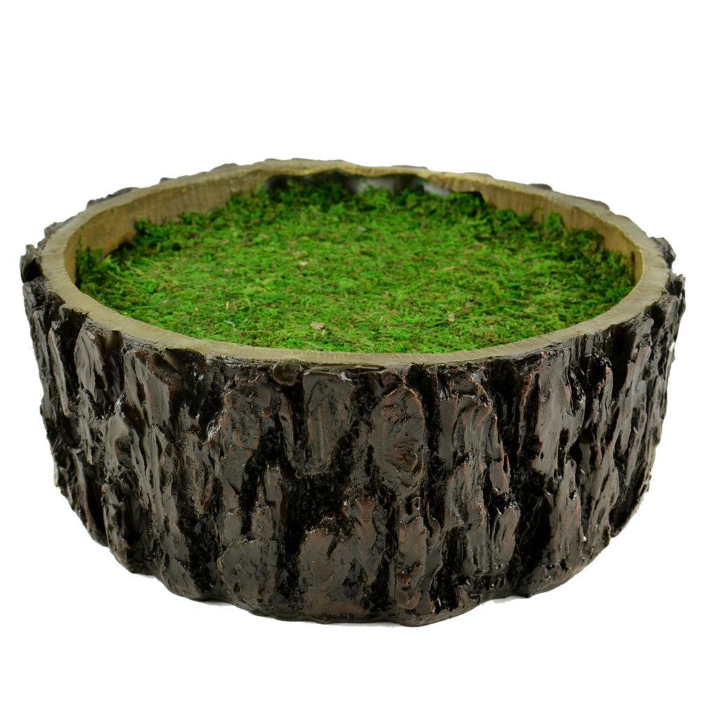 Tree Stump Container - MyFairyGardens.com