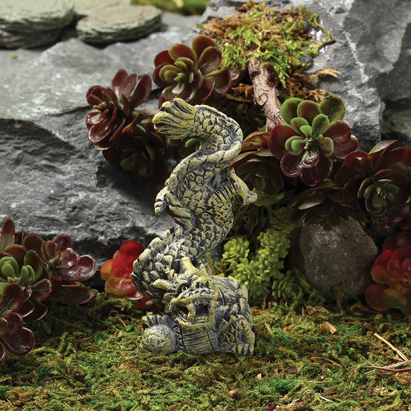 Fairy Garden-Chinese Dragon-Zen-Georgetown Home And Garden-MyFairyGardens