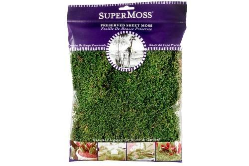 Fairy Garden-Sheet Moss 2oz - Fresh Green-Accessories-Super Moss-MyFairyGardens