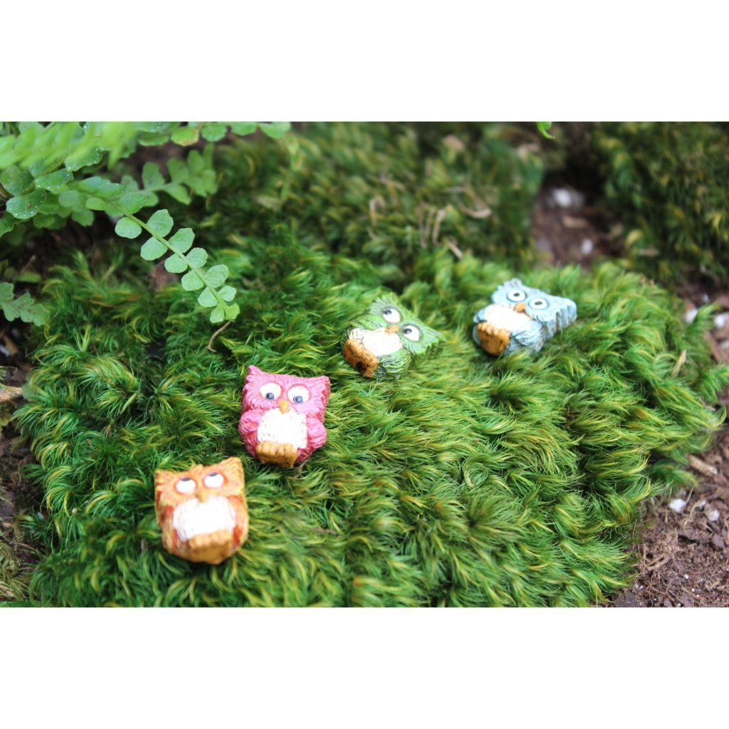 Whoo Goes There Stepping Stones - Set of 4 - MyFairyGardens.com