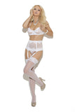 Mesh Bra Waist Cincher and Garter Belt Set elegant moments 5754
