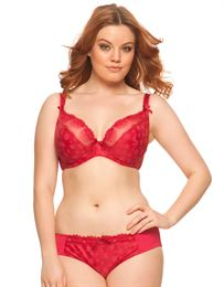 curvy kate daisy plunge bra black ruby