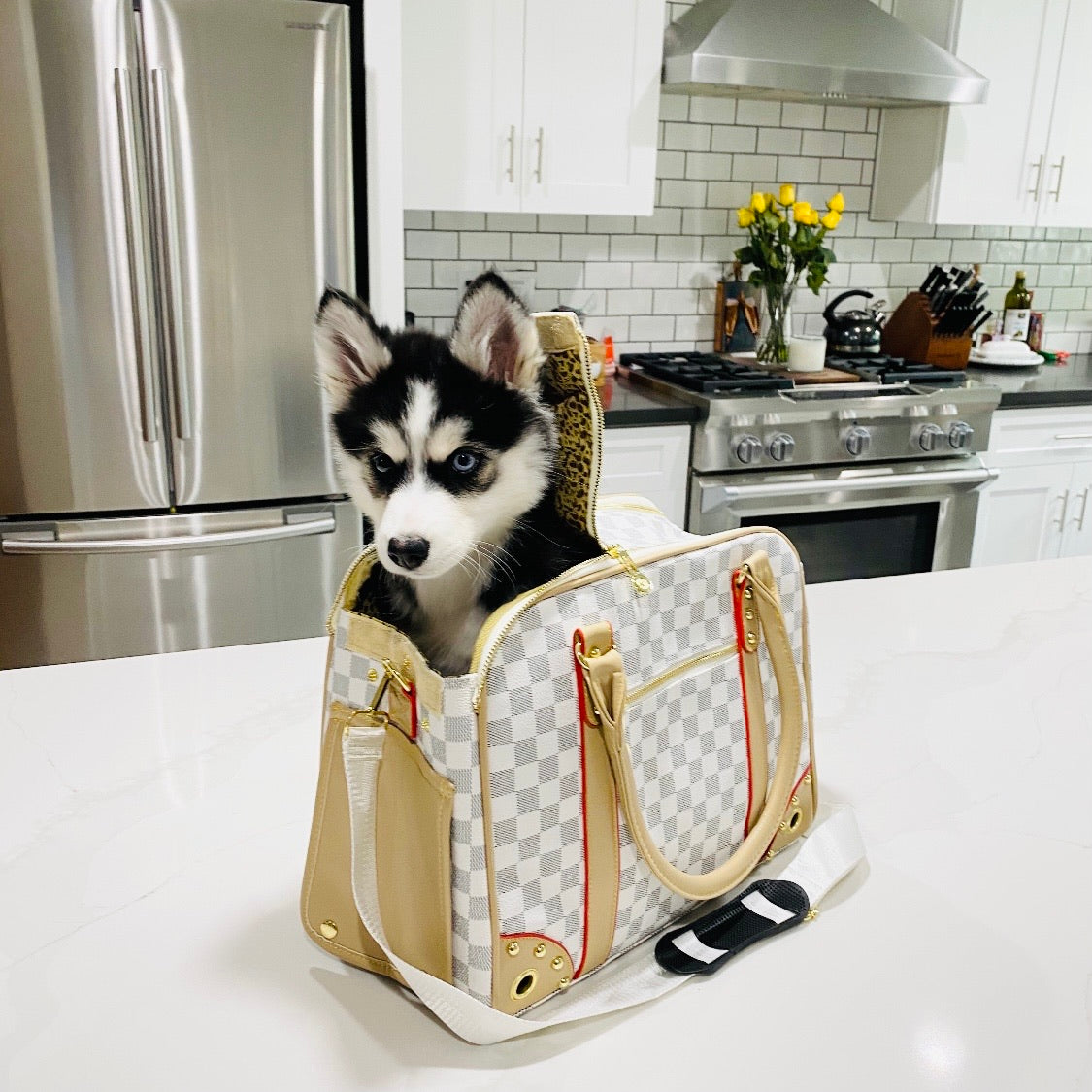 LV Inspired Pet Carrier