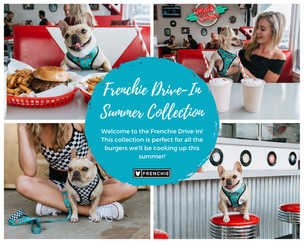 Frenchie Drive In Collection