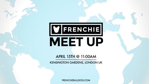 Frenchie Bulldog Meet Up- Kensington Gardens, London UK🇬🇧