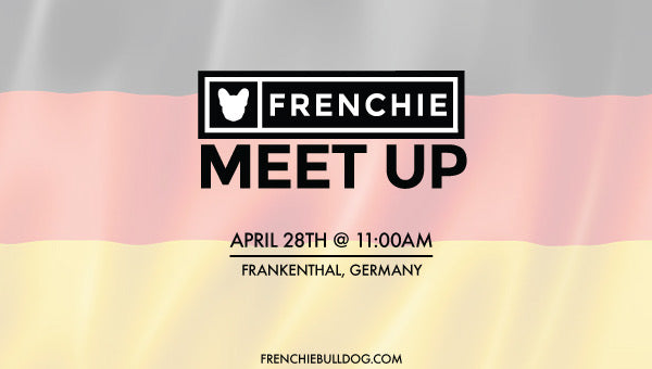 Frenchie Bulldog Meet Up- Frankenthal, Germany 🇩🇪