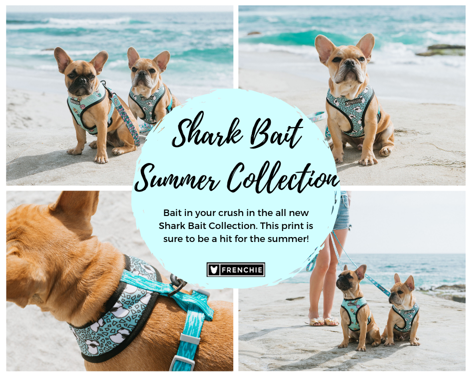 Shark Bait Collection