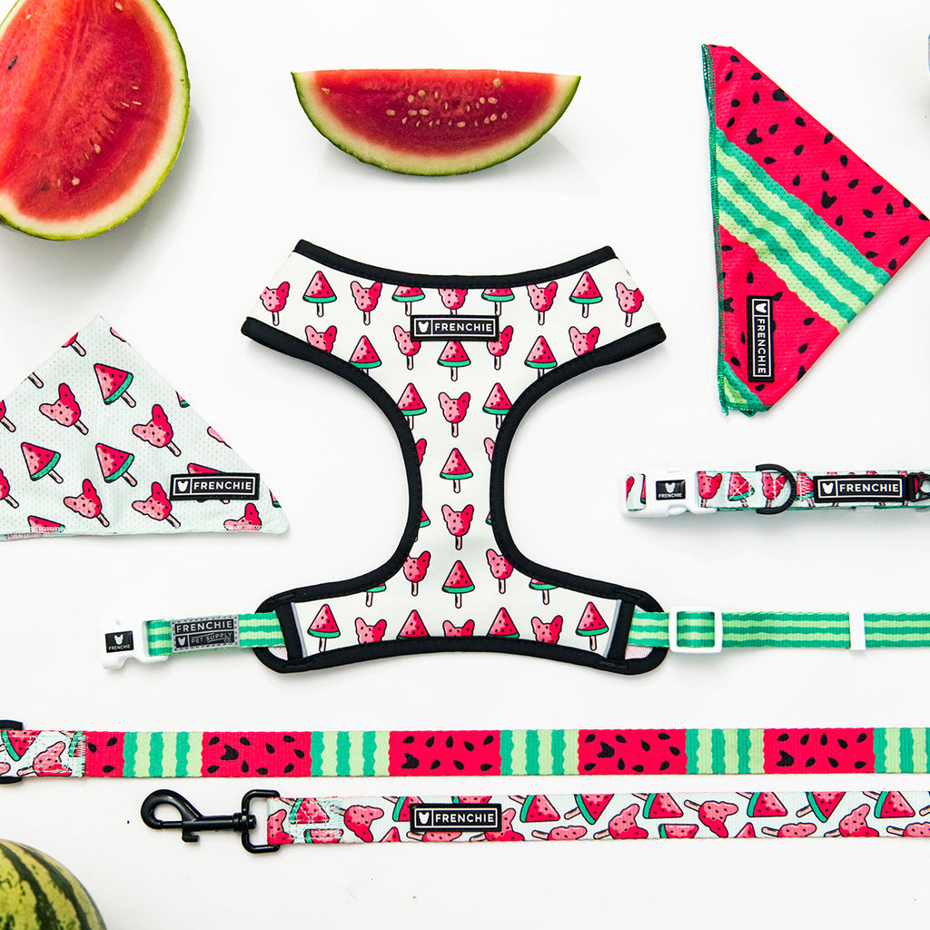 Watermelon Collection