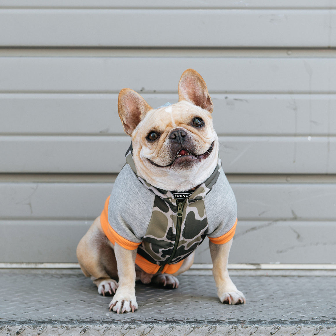 Frenchie Dog Hoodie - Green Frenchie Camo