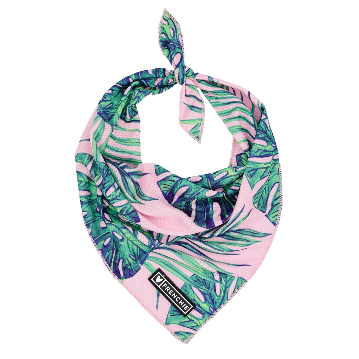 Frenchie Cooling Bandana - Pink Beverly Palms