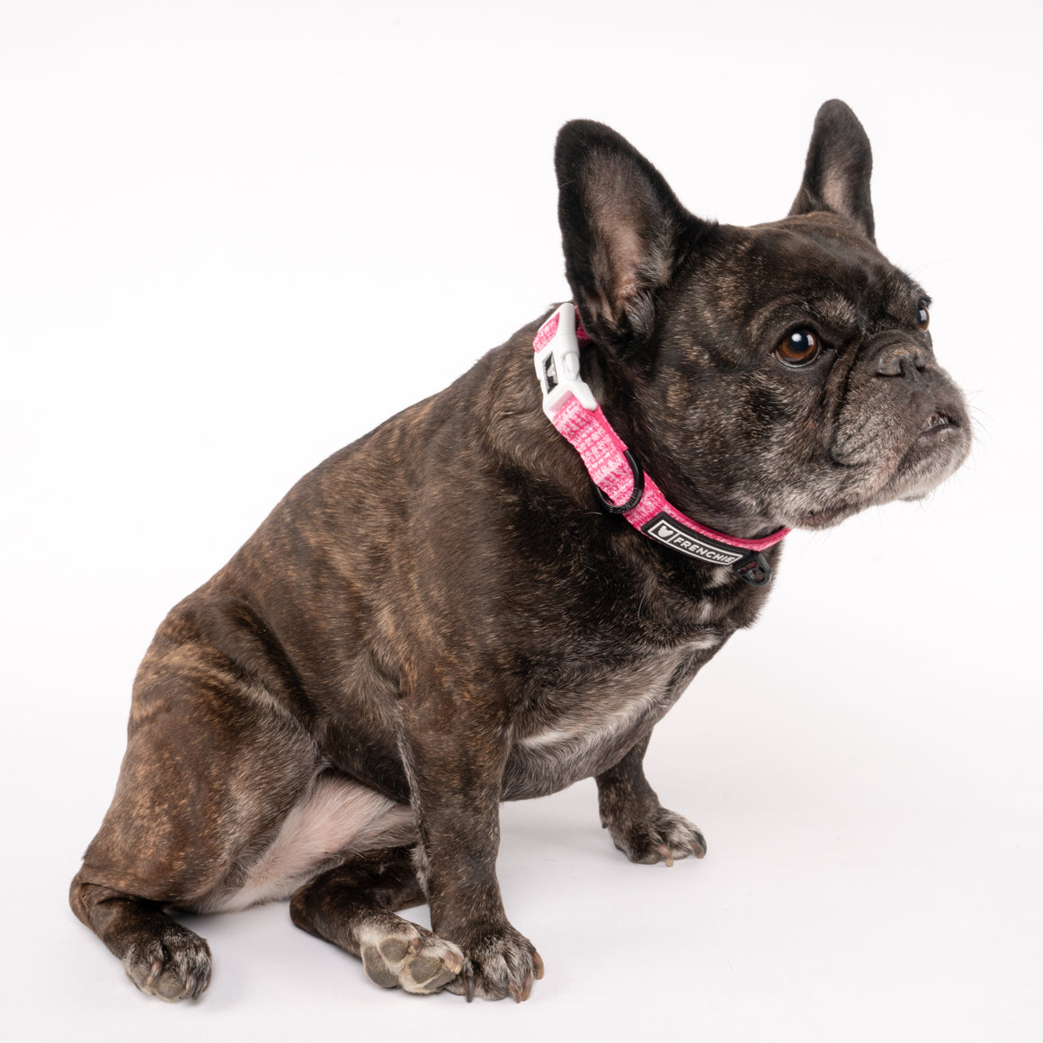 Frenchie Comfort Collar - Pink Tweed