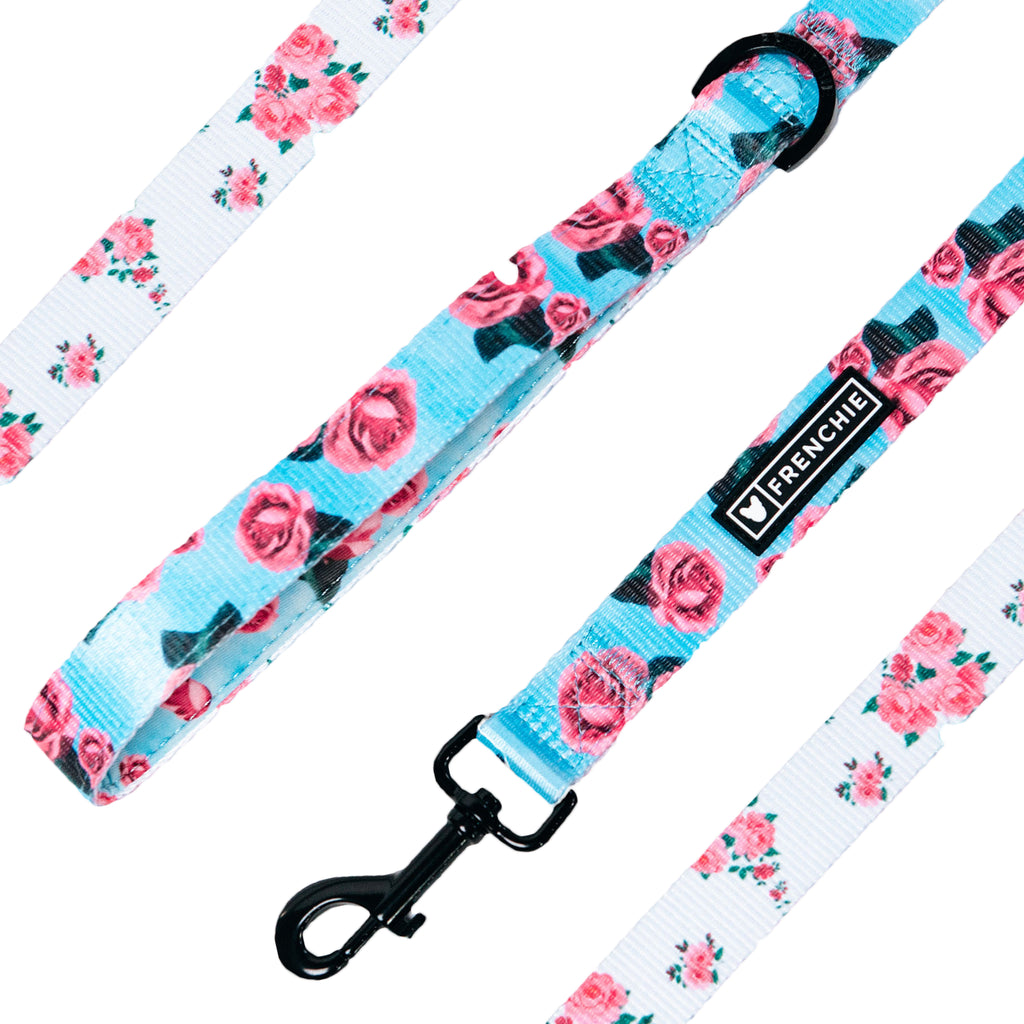Frenchie Comfort Leash - Rosebud