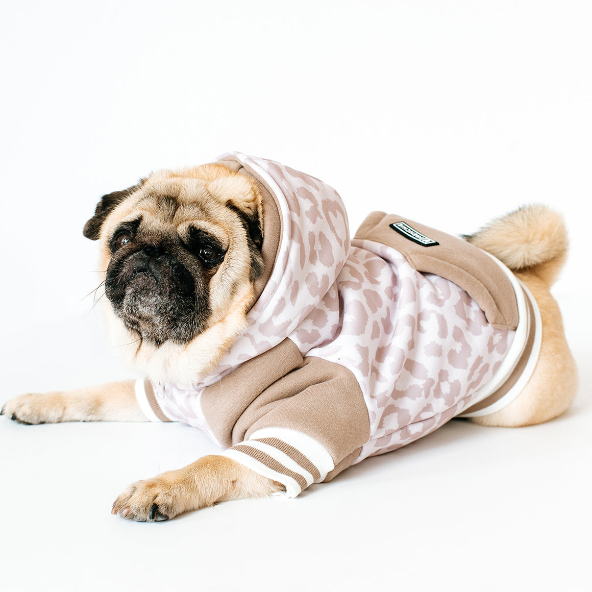 Frenchie Dog Hoodie - The Leo- Beige