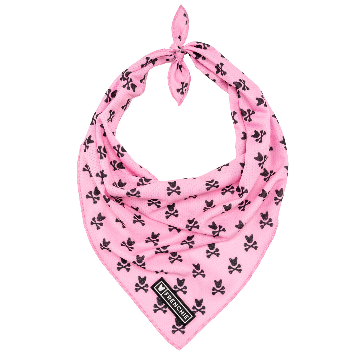 Frenchie Cooling Bandana- Pink Bad to the Bone