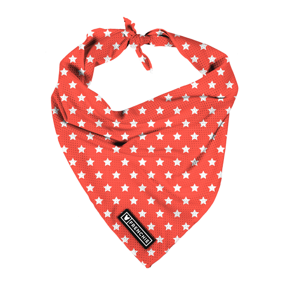 Frenchie Cooling Bandana- Stars