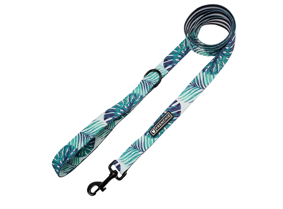 Frenchie Comfort Leash - Beverly Palms