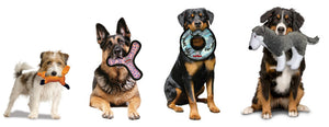 Dog Toys for Puppies, Small Dogs, Medium Sized Dogs and Large Breeds