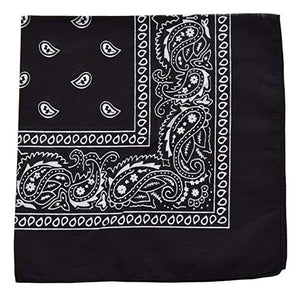 2 Pieces Novelty Bandanas Paisley Cotton Bandanas - Kurolabel Brand