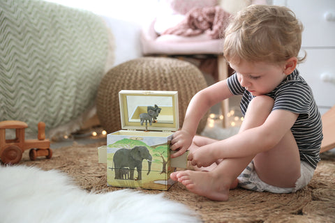 safari musical treasure box | cute affordable gifts for children from Enchantmints