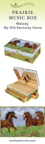 Prairie Music Box for children's jewelry and keepsakes.  Perfect gift for horse lovers | Pretty children's gifts and kids decor from Enchantmints