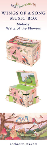 Wings of a Song Music Box for treasures and keepsakes.  The perfect bird lovers gift from Enchantmints