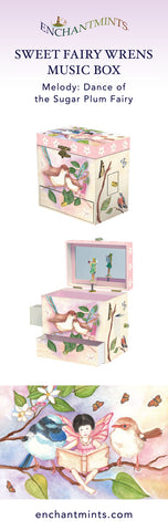 Sweet Fairy Wrens Music Box for children's jewelry and keepsakes.  Perfect gift for bird and fairy lovers | Pretty children's gifts and kids decor from Enchantmints