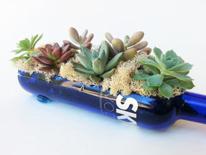 Skyy Vodka Bottle cut into a Custom Vodka Gift - Planter - Serving Dish