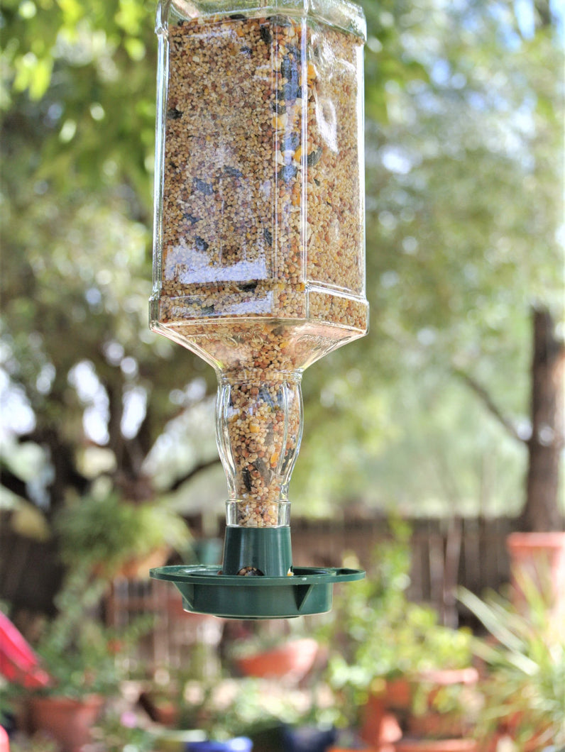 Jack Daniels Glass Bird Feeder - Bottle Bird Feeder