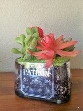 Huge Patron Candy Dish or Use as a Planter - Cut Bottle Dish