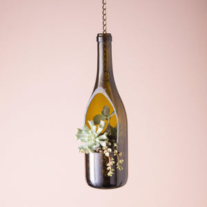 Hanging Wine Bottle Planter with Live Succulents