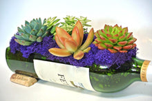 Glass Succulent Planter for Wine Lover - Wine Gifts - Succulent GIFT