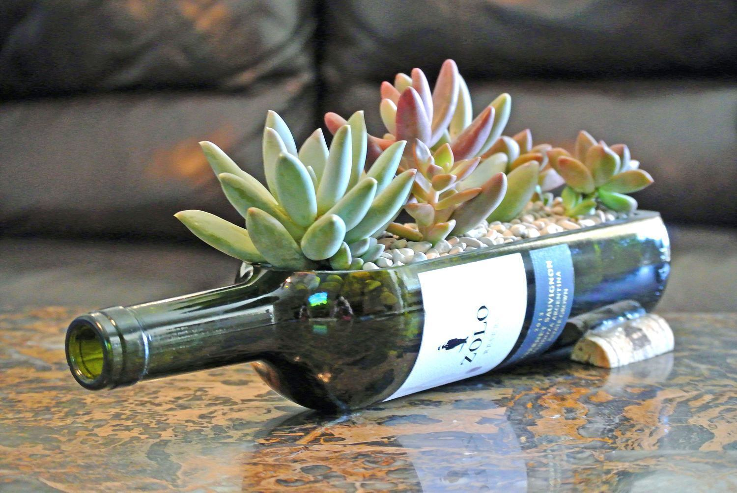 Wine Bottle Garden with Live Succulents - Wine Gifts - Gift Ideas for
