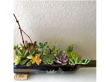 Wine Bottle Planter - Stunning Wine Gift - (empty) Use as Wine Bottle Decor for Indoor Plants