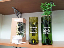 TWO Self Watering Hydroponic Gardens  - Wine Bottle Indoor Herb Garden for your Kitchen - Herbs Gift